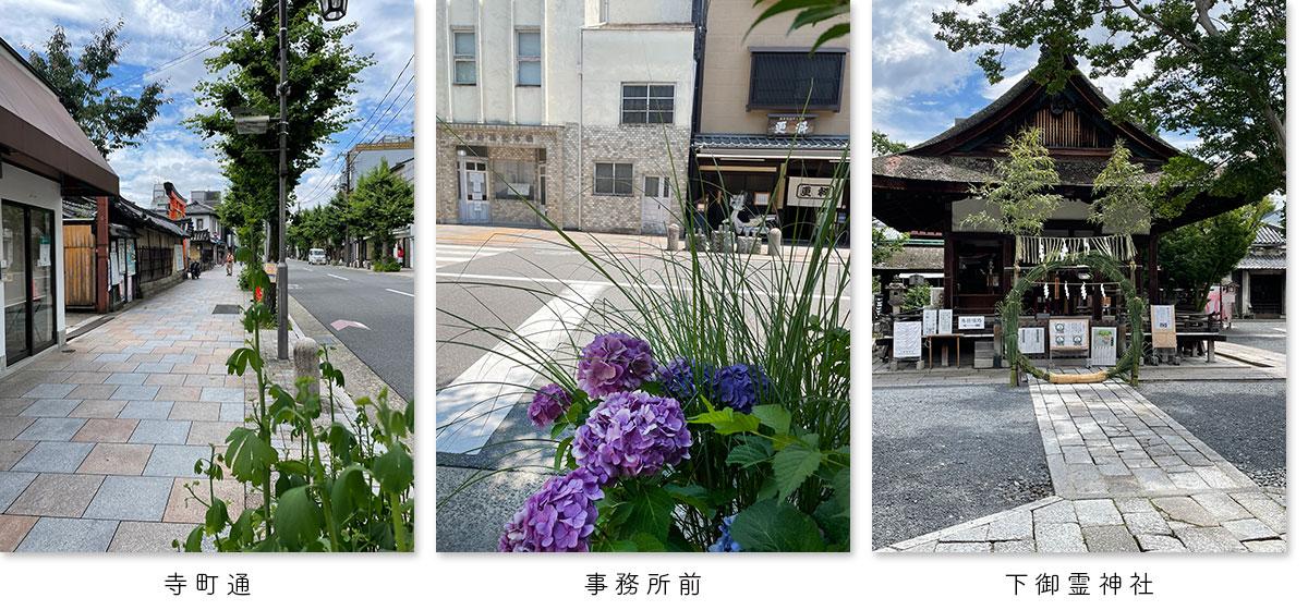 事務所前の寺町通りの風景、アジサイや下御霊神社の風景