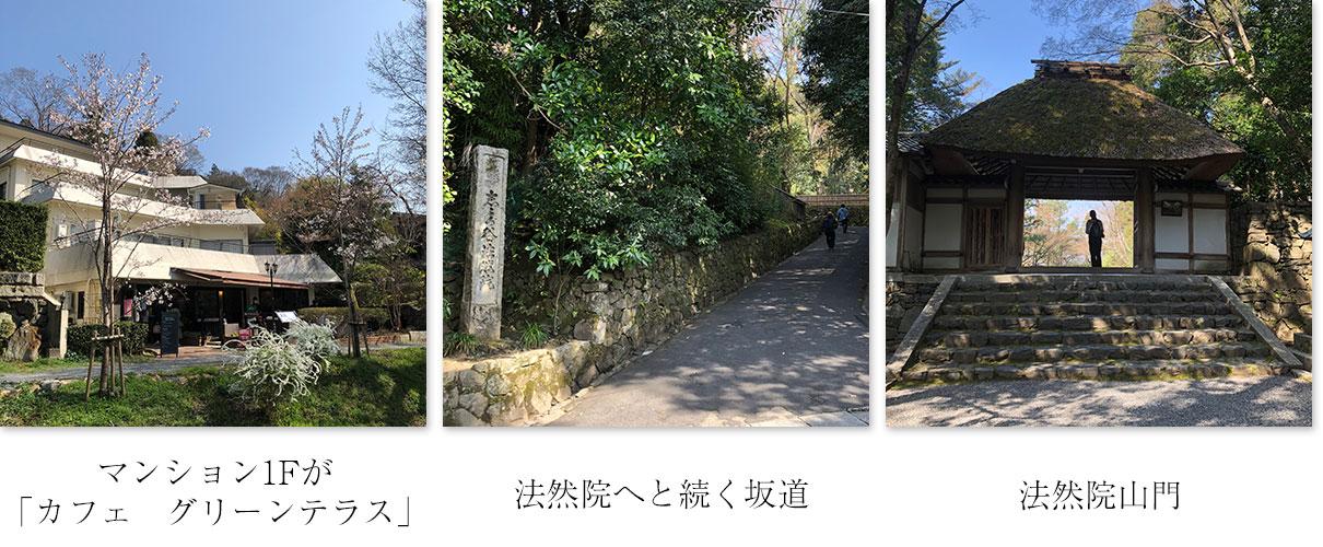 カフェグリーンテラスと法然院の道、山門