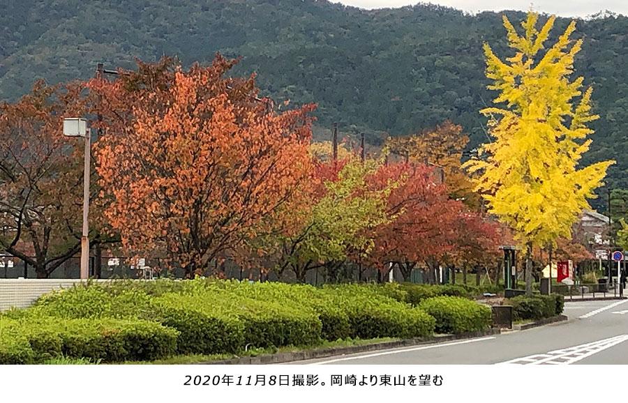 2020年11月8日撮影。岡崎より東山を望む。