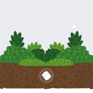 手元供養と埋葬について